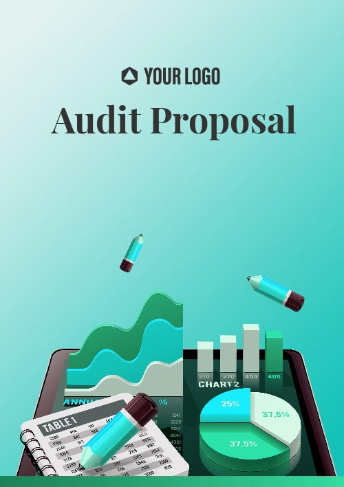 Audit Proposal